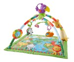 Fisher Price Deluxe Gym